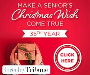 Make a Senior's Christmas Wish Come True